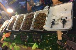 Weird food in Thailand